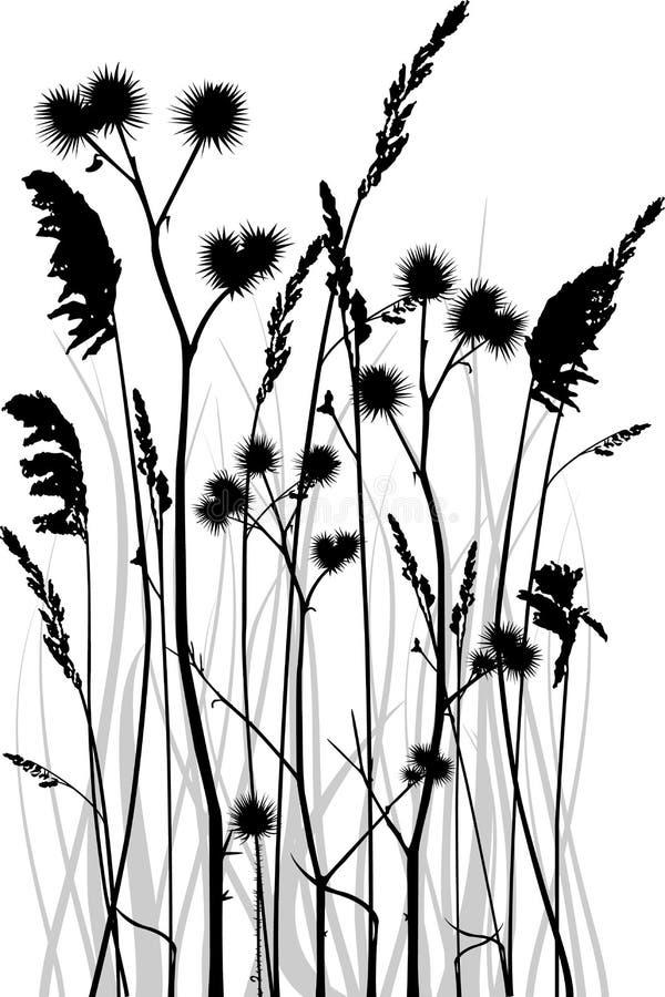 Silhueta da grama ilustração stock