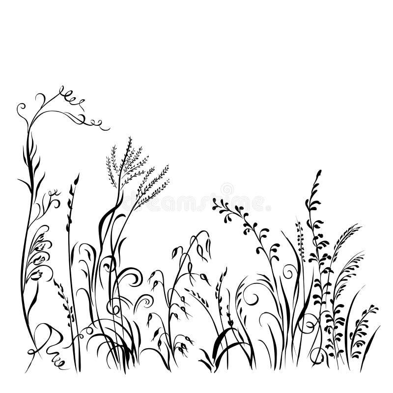 Silhueta da grama e das flores isolada no fundo branco ilustração royalty free
