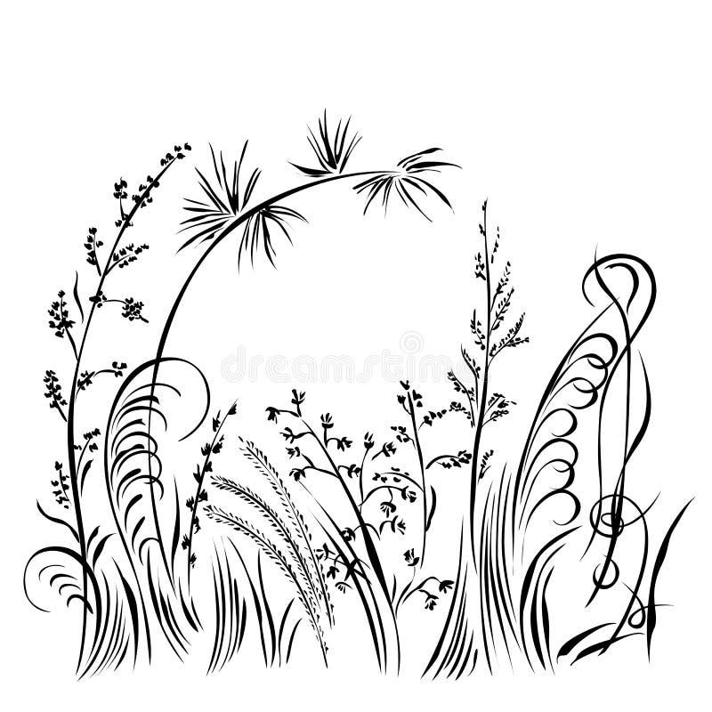 Silhueta da grama e das flores isolada no fundo branco ilustração stock