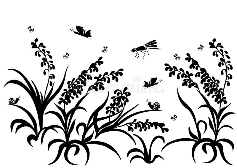 Silhueta da grama, flores, inseto isolado ilustração royalty free