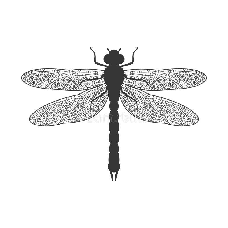 Silhueta da libélula ilustração stock