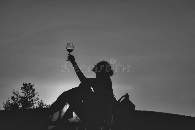 Silhueta da menina com vinho foto de stock royalty free