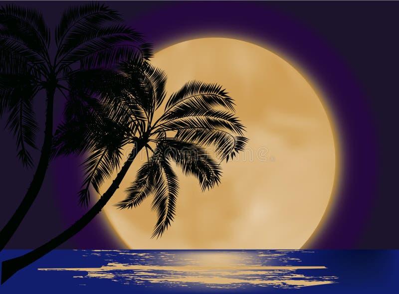 Silhueta da palmeira na lua ilustração stock