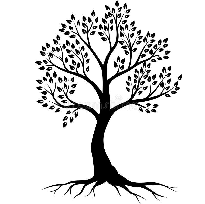 Silhueta da ?rvore no fundo branco ilustração stock