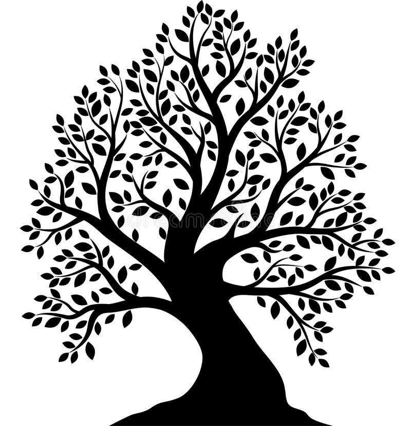 Silhueta da ?rvore no fundo branco ilustração do vetor