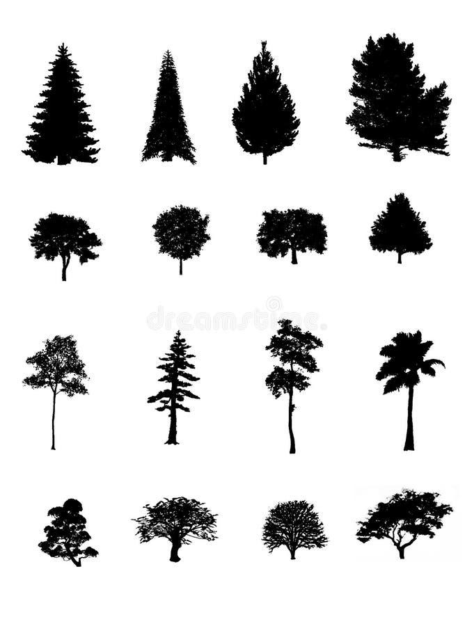 Download Silhueta das árvores ilustração stock. Ilustração de preto - 12803443