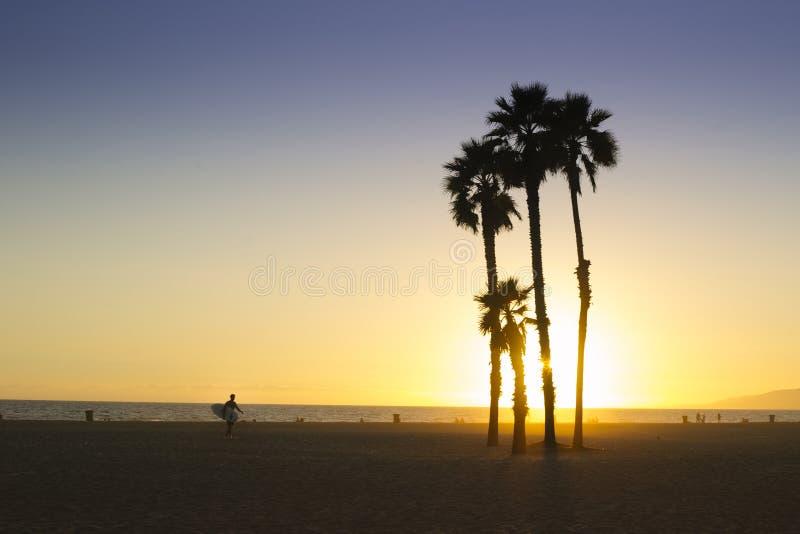 Silhueta das palmeiras e do surfista em um por do sol brilhante em Santa Monica imagem de stock