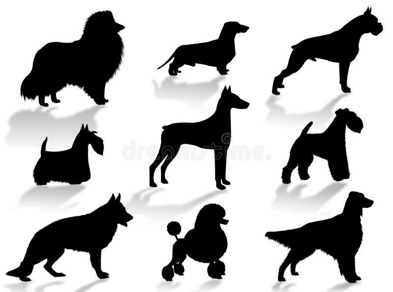 Silhueta das raças dos cães fotografia de stock