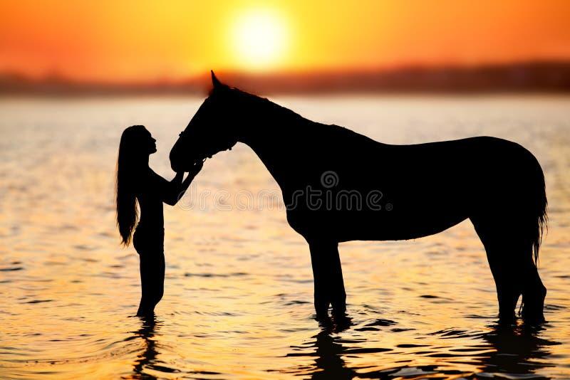 Silhueta de cavalos e raparigas fotografia de stock royalty free