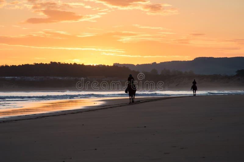 Silhueta de dois cavaleiros do cavalo em uma praia no nascer do sol Somo, Espanha fotos de stock