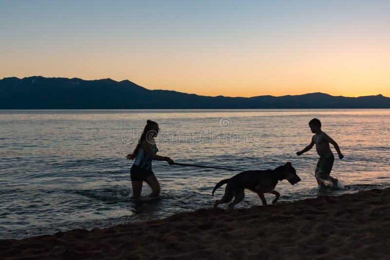 Silhueta de duas crianças que jogam com o cão na costa do lago fotografia de stock