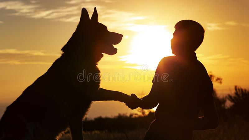Silhueta de um homem novo que agita a pata seu cão favorito em um campo no por do sol, menino com um pastor alemão do animal de e fotografia de stock royalty free