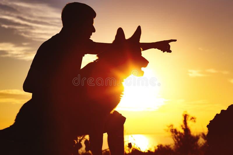 Silhueta de um homem que anda com um cão no campo no por do sol, animal de estimação do treinamento do indivíduo na natureza do v fotos de stock