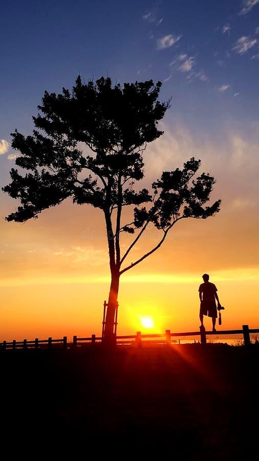 A silhueta de um homem que está de observação o por do sol bonito na praia imagens de stock