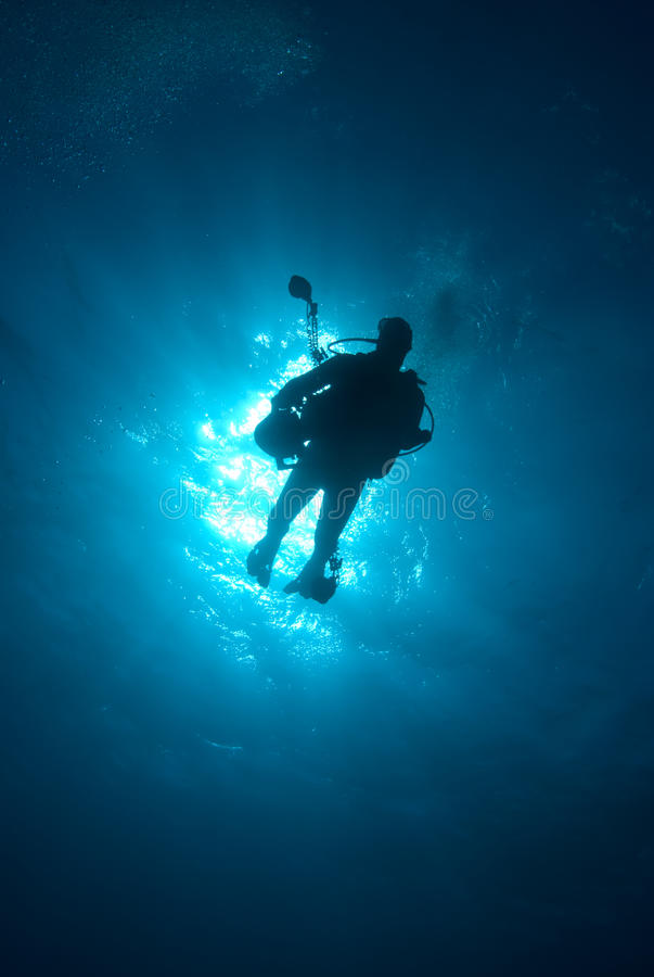 Silhueta de um mergulhador de mergulhador foto de stock royalty free