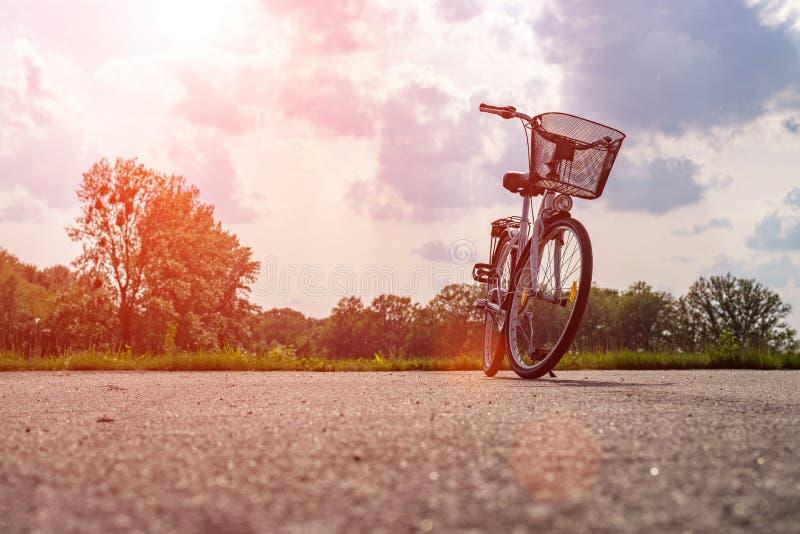 Silhueta de uma bicicleta na floresta no por do sol Bicicleta e conceito da ecologia fotografia de stock royalty free
