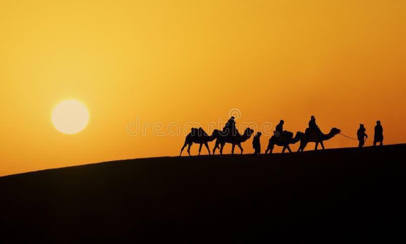 Silhueta de uma caravana do camelo imagem de stock