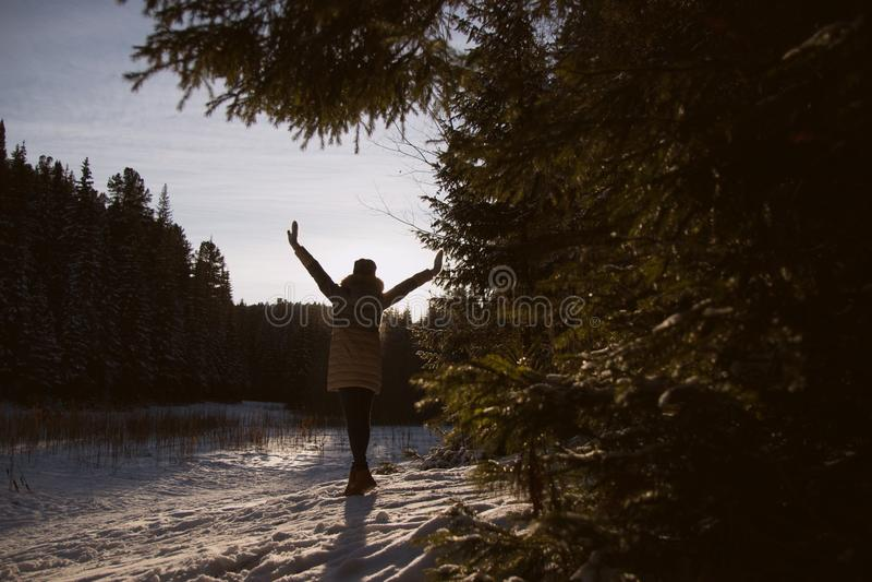 Silhueta de uma menina na floresta do inverno foto de stock royalty free