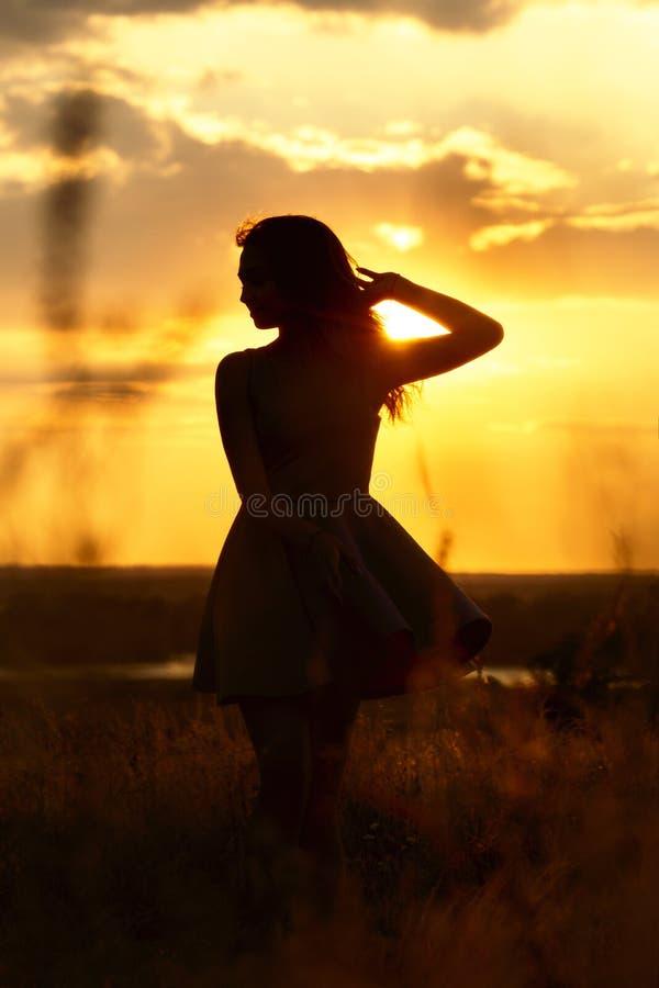 A silhueta de uma menina sonhadora bonita em um vestido no por do sol em um campo, uma jovem mulher com seu cabelo está apreciand foto de stock royalty free