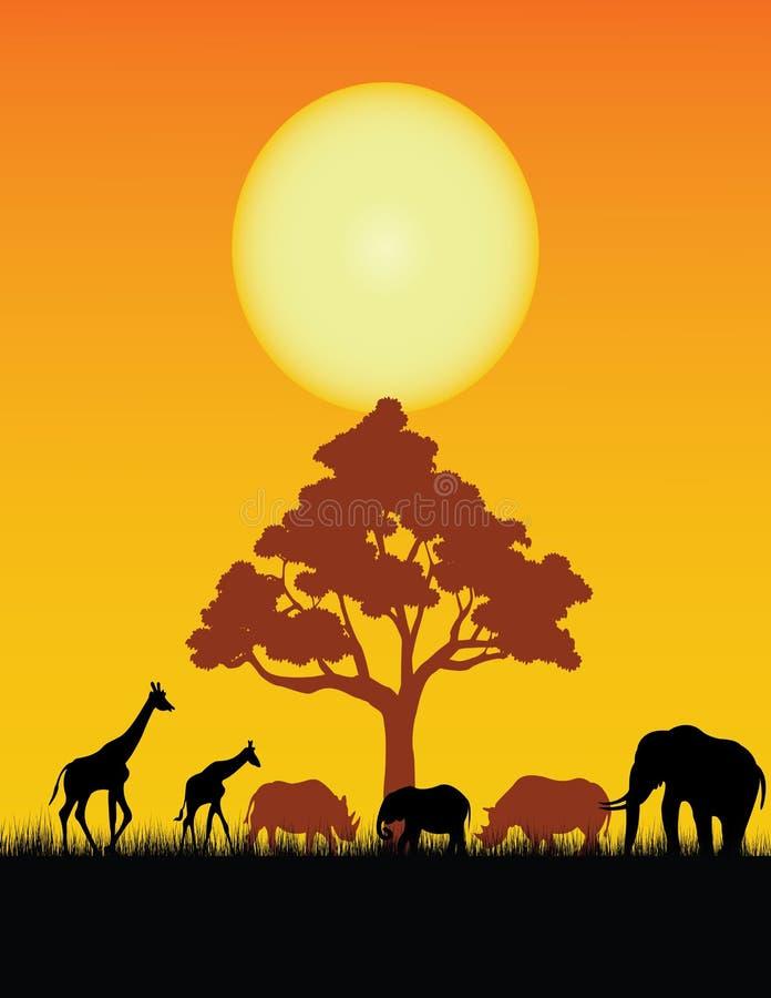 Silhueta do animal selvagem ilustração royalty free