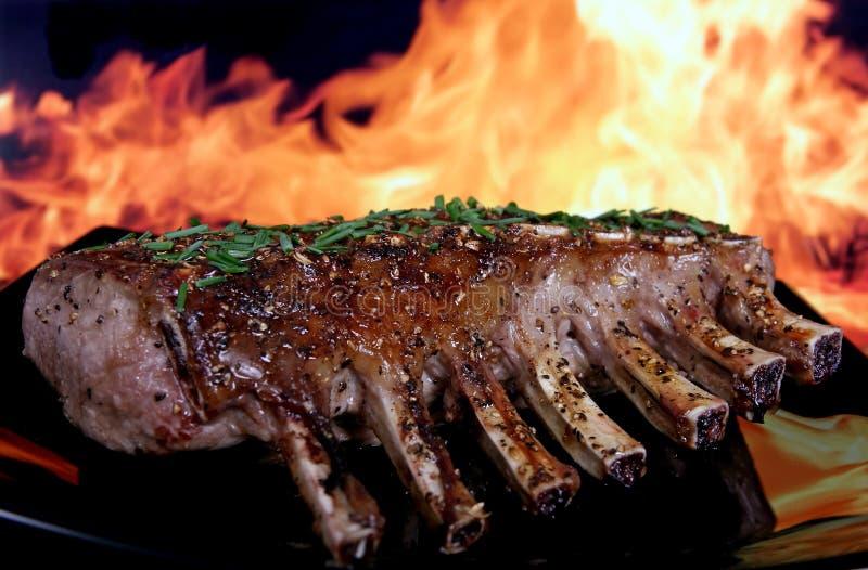 Silhueta do BBQ do jardim do verão isolado de encontro ao incêndio imagens de stock