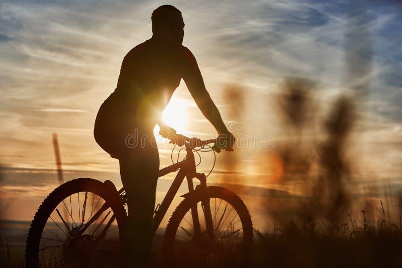 Silhueta do ciclista que está com o Mountain bike no monte no por do sol foto de stock royalty free