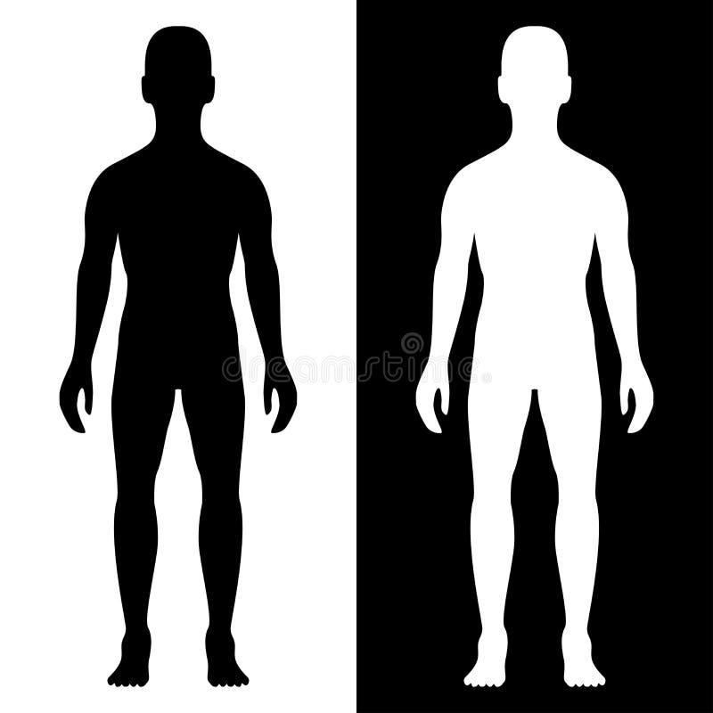 Silhueta do corpo do homem ilustração royalty free