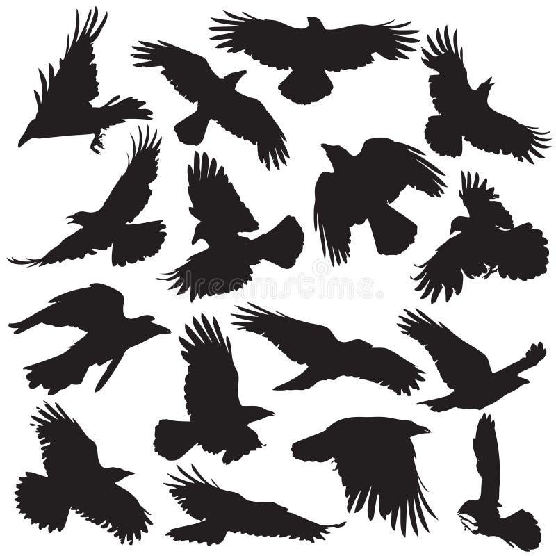 A silhueta do corvo ajustou 02 ilustração stock