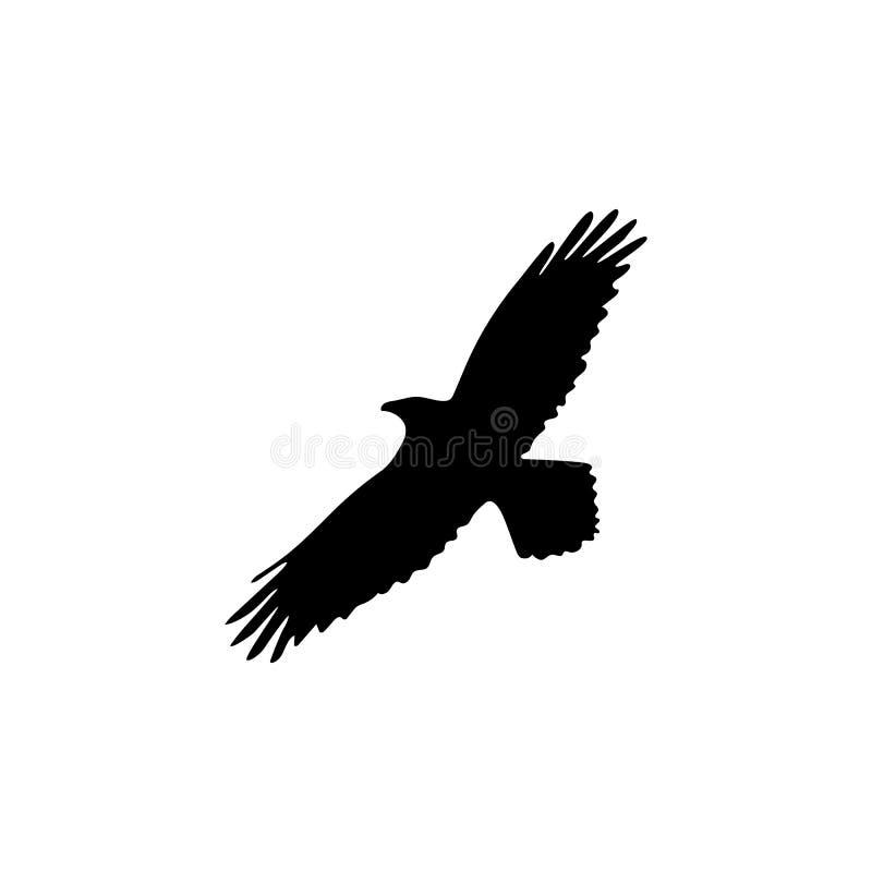 Silhueta do corvo na ilustração branca do vetor do fundo ilustração stock