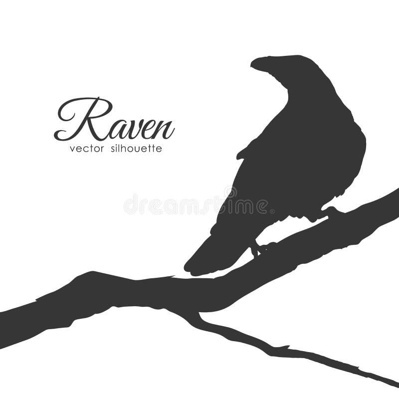 Silhueta do corvo que senta-se em um ramo seco isolado no fundo branco ilustração stock