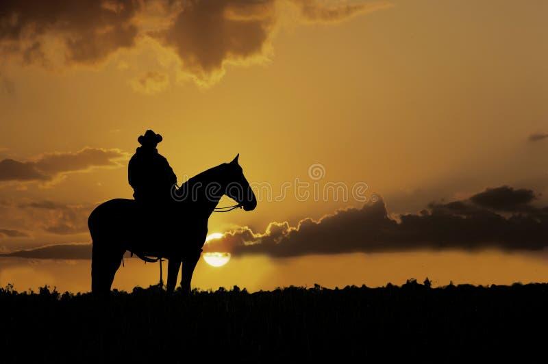 Silhueta do cowboy fotos de stock royalty free