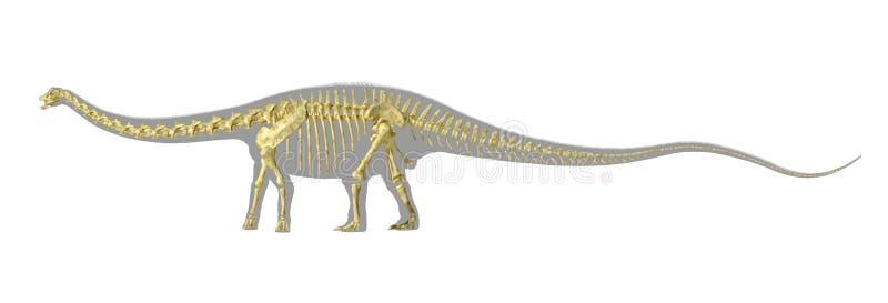 Silhueta do dinossauro do Diplodocus, com o esqueleto foto-realístico completo. ilustração royalty free
