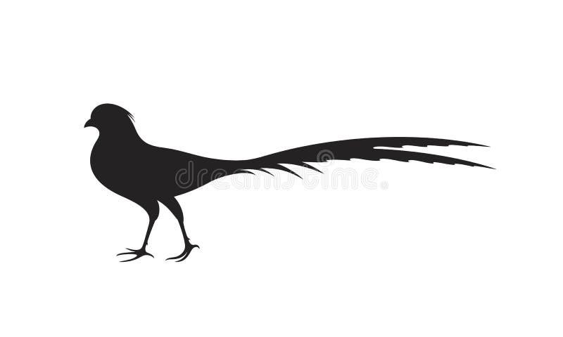 Silhueta do faisão Faisão isolado no fundo branco pássaro ilustração royalty free