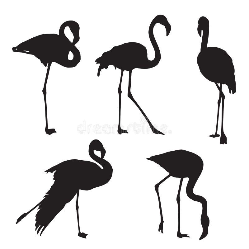 Silhueta do flamingo fotografia de stock royalty free