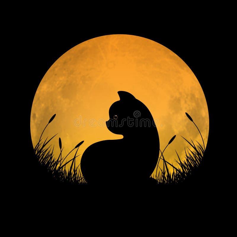 Silhueta do gato que senta-se no campo de grama com fundo da Lua cheia ilustração stock