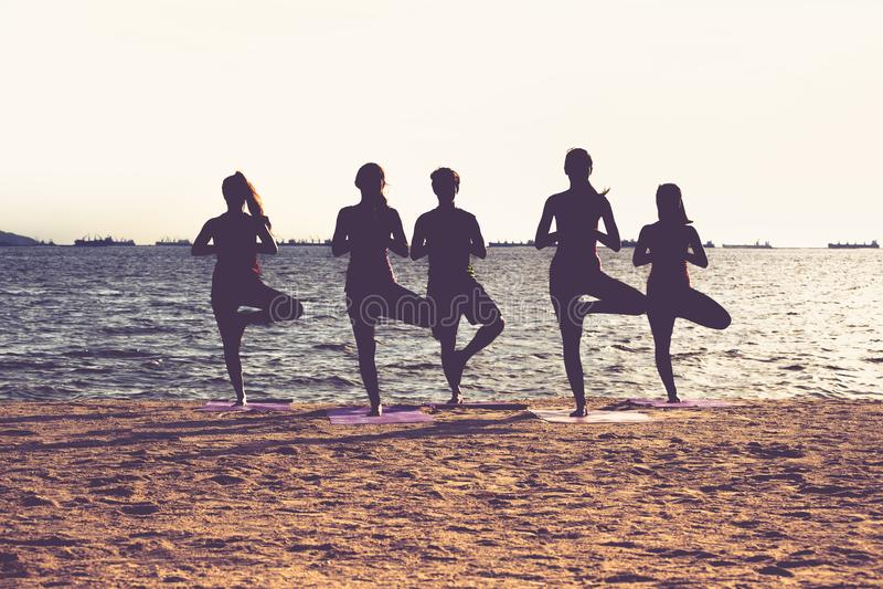Silhueta do grupo de pessoas da ioga que faz a pose e o namaste da árvore fotos de stock