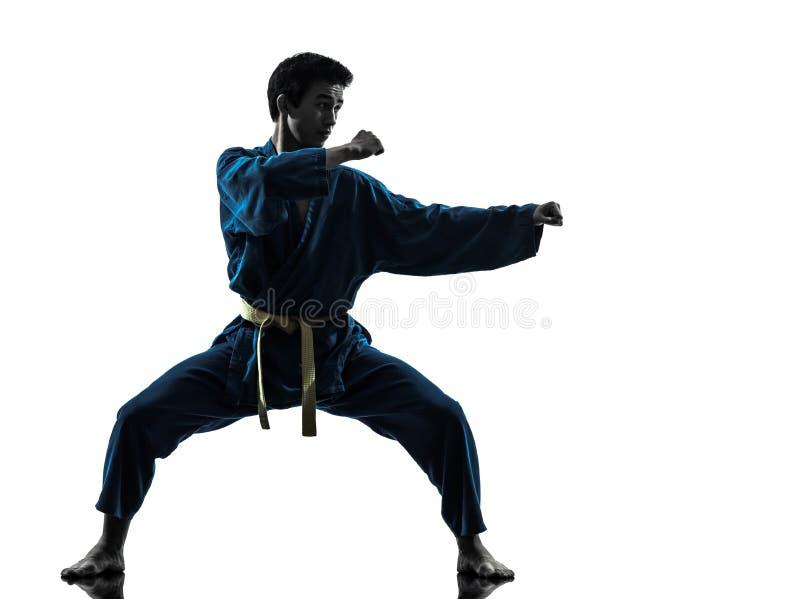 Silhueta do homem das artes marciais do vietvodao do karaté foto de stock