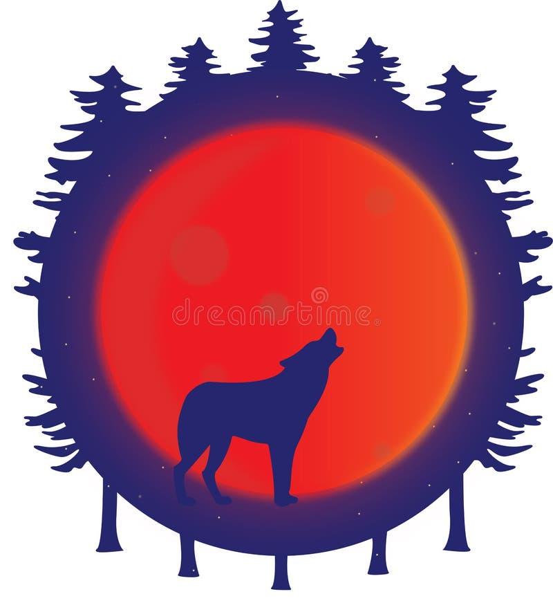 Silhueta do lobo que urra na lua da ascendência pura na floresta imagens de stock