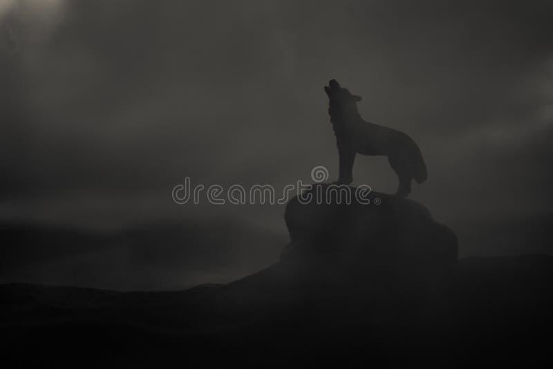 Silhueta do lobo do urro contra o fundo nevoento tonificado escuro Conceito do horror de Halloween imagens de stock