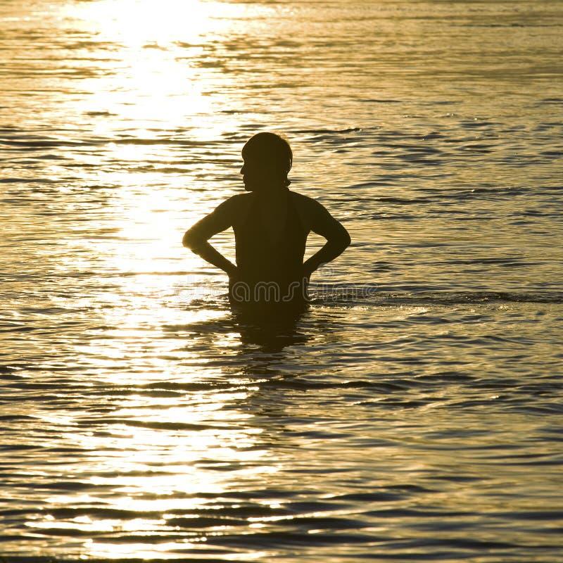 Silhueta do nadador da mulher no por do sol fotos de stock