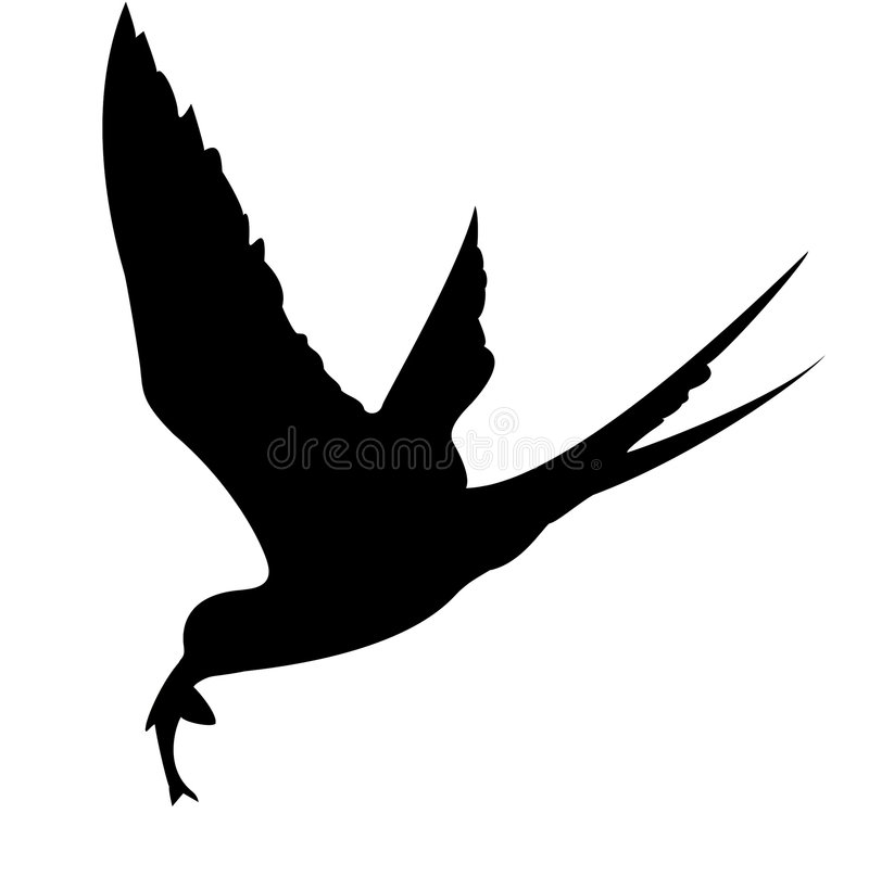 Silhueta do pássaro de mar ilustração royalty free