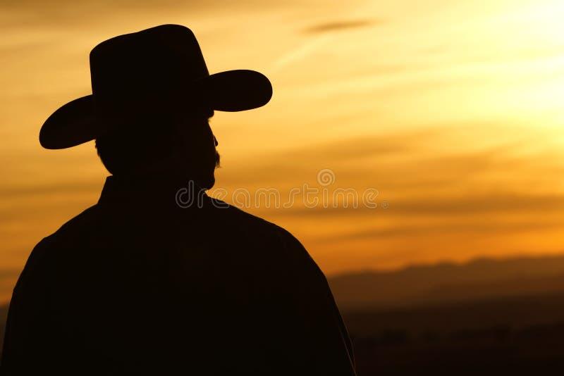 Silhueta do por do sol do cowboy imagens de stock royalty free