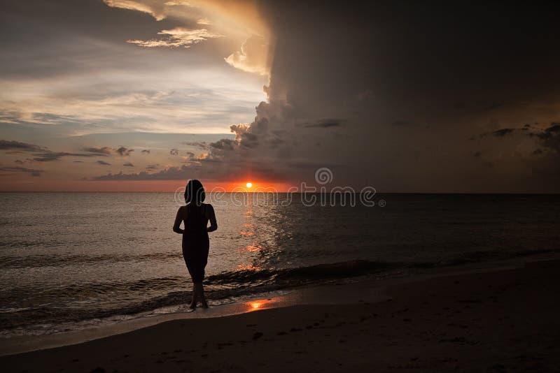 Silhueta do por do sol de Nápoles, Florida imagens de stock royalty free