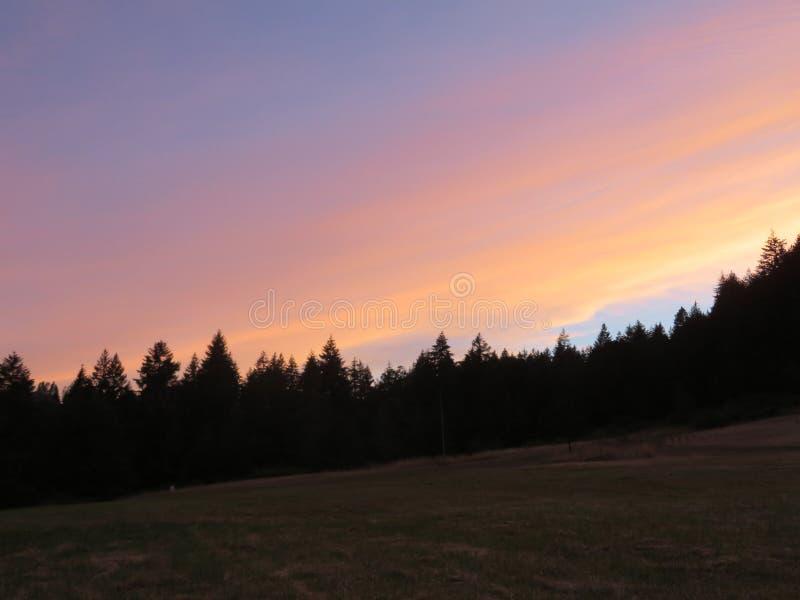 Silhueta do por do sol de Oregon fotografia de stock