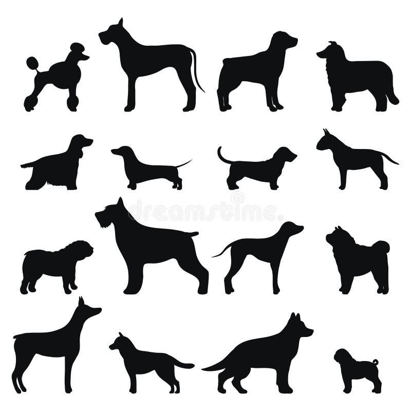 Silhueta do preto do vetor da raça do cão ilustração do vetor