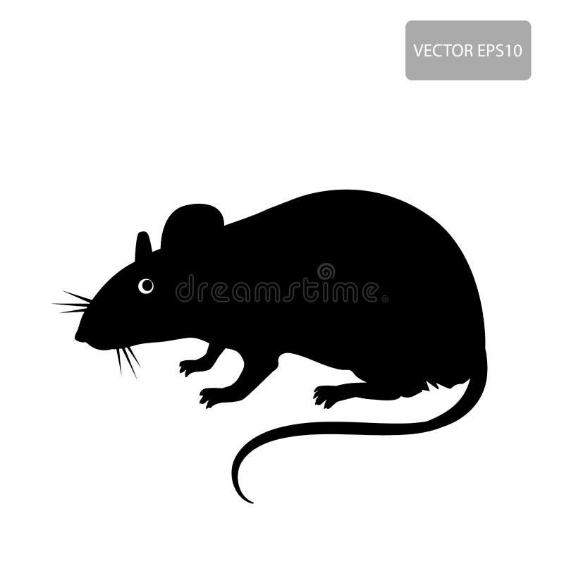 Silhueta do rato no fundo branco Doença do vetor do rato Roedor prejudicial, parasita ilustração royalty free