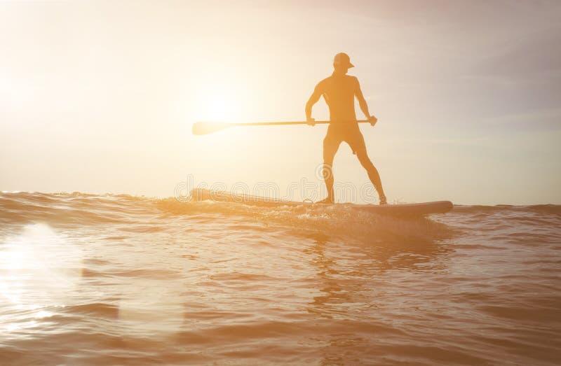 Silhueta do surfista no por do sol fotos de stock