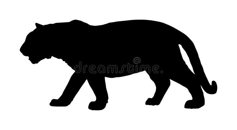 Silhueta do tigre isolada no fundo branco Gato selvagem grande Tigre de Amur do tigre Siberian - altaica de tigris do Panthera ilustração do vetor