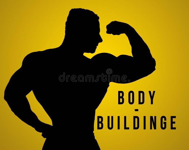 A silhueta do torso do construtor de corpo masculino fotos de stock