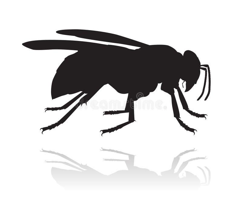 Silhueta do vetor da vespa ilustração do vetor